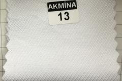 RENK 13