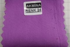 RENK 24