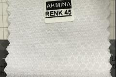 RENK 45